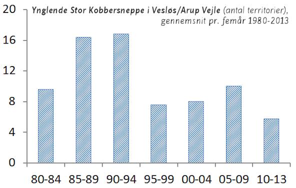 Graf med bestandsudvikling hos Stor Kobbersneppe i Vesløs/Arup Vejle.