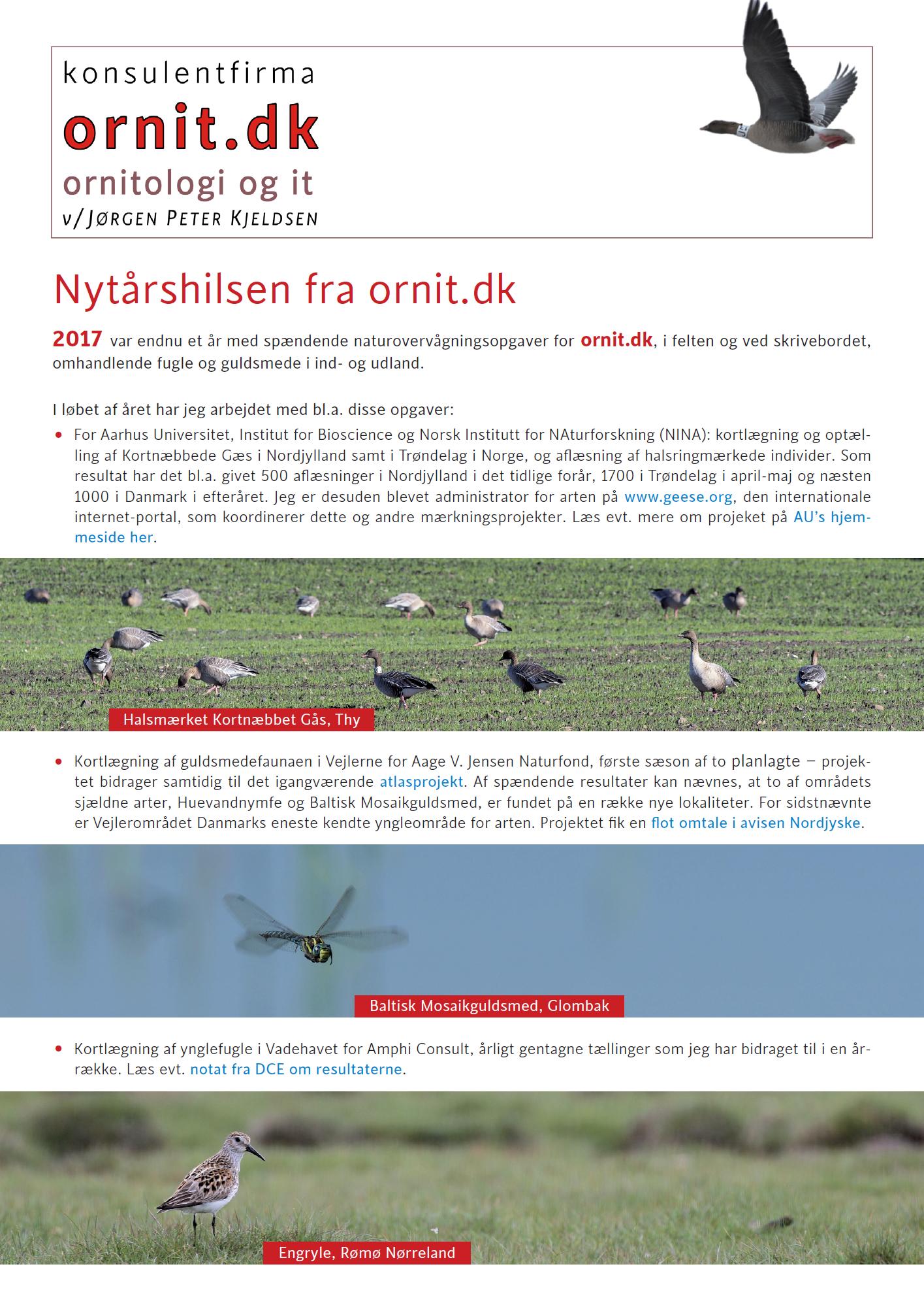 Nytårshilsen 2017 fra ornit.dk
