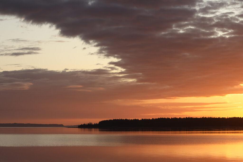 Solnedgang set fra Arupdæmningen, november 2019. Foto: Jørgen Peter Kjeldsen/ornit.dk.